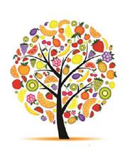 A Primavera e as suas Frutas