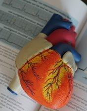 Cardiologistas do CHL acolhem formação especializada dedicada à saúde coronária ostial