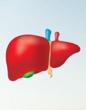 Dia Mundial das Hepatites